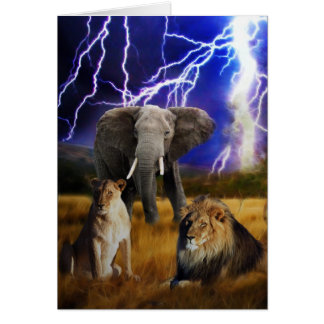 Carte Éléphant Afrique du Sud de lions