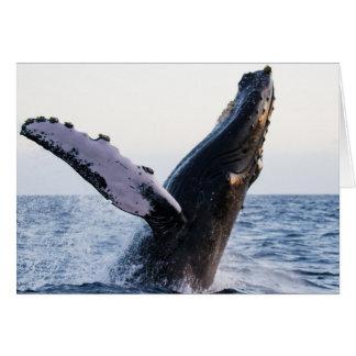 Carte En ouvrant une brèche la baleine de bosse #1,