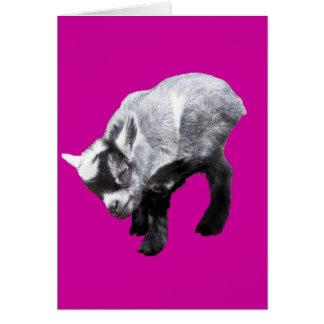 Carte Éraflure miniature de chèvre