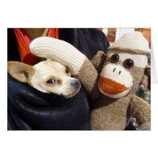 Carte Ernie le singe et le chiwawa de chaussette cardent