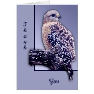 Carte faucon de Court-queue