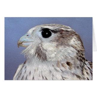 Carte Faucon de prairie
