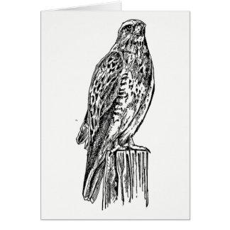 Carte Faucon majestueux noir et blanc