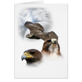 Carte Faucons