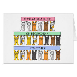 Carte Félicitations sur devenir une grande soeur