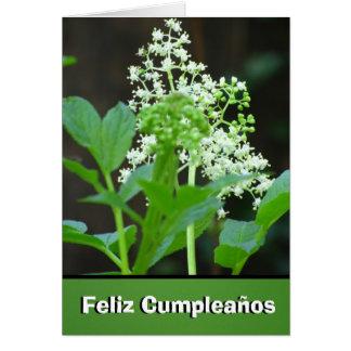 Carte - Feliz Cumpleaños - Flores Blancas