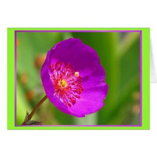 Carte - Feliz Cumpleaños - La Flor Rosa