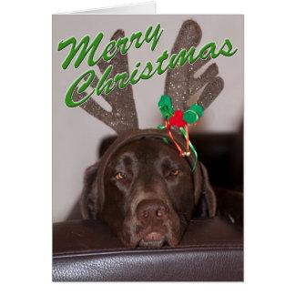 Carte Fermez-vous de Labrador avec la photographie