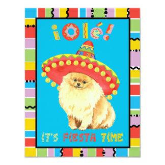 Carte Fiesta Pomeranian