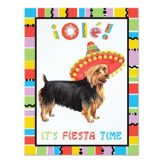 Carte Fiesta Terrier australien