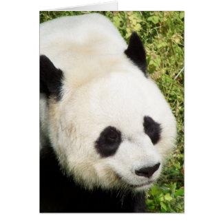 Carte Fin de panda géant vers le haut de portrait