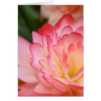 Carte Fleur d'âme de bégonia