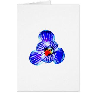 Carte Fleur de crocus