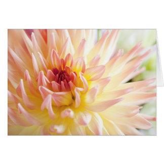 Carte Fleur de dahlia