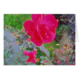 Carte Fleur fuchsia de rose de rose en fleur avec la
