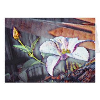 Carte Fleur molle de cottage de clématite avec le