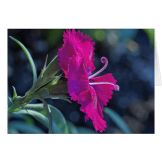 Carte Fleur rose avec des Stamens - masquez à