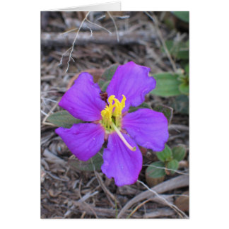 Carte Fleur Sri Lanka