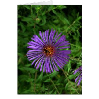 Carte Fleur Vide-Bleue