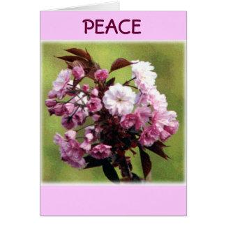 Carte Fleurs de paix