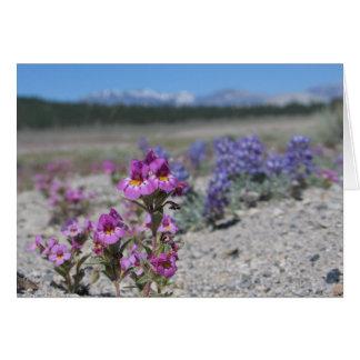 Carte Fleurs et de loup inconnus, parc national de