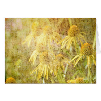 Carte Fleurs inspirées de jardin d'echinacée
