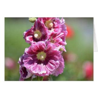 Carte Fleurs inspirées de rose trémière