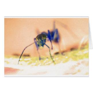 Carte fourmi d