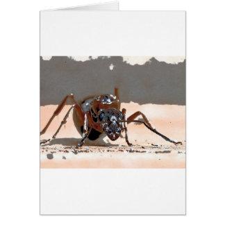 Carte fourmi i