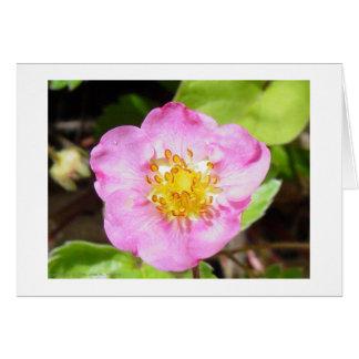 Carte Fraise fleurissante rose
