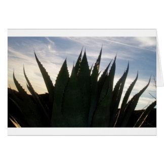 Carte Fusées éclairantes d'agave