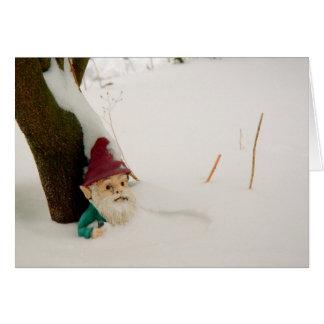 Carte Gnome d'hiver