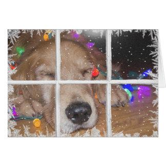 Carte Golden retriever de Noël avec des lumières