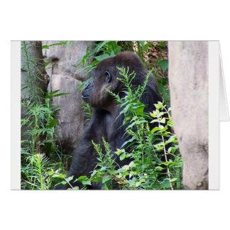 Carte Gorille dans la brume