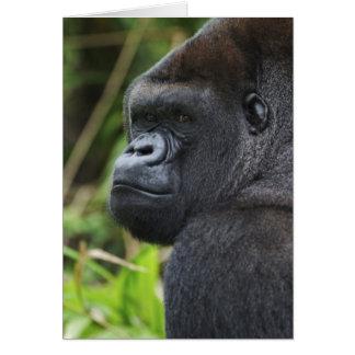 Carte Gorille de plaine de Silverback, captif de gorille