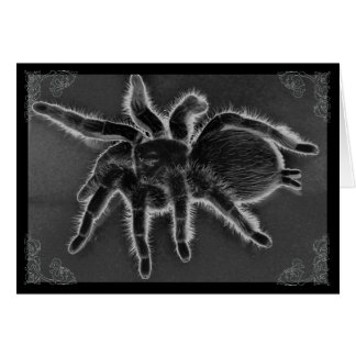 Carte gothique d'araignée de tarentule
