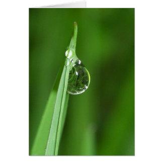 Carte Gouttelette d'herbe verte et d'eau avec la