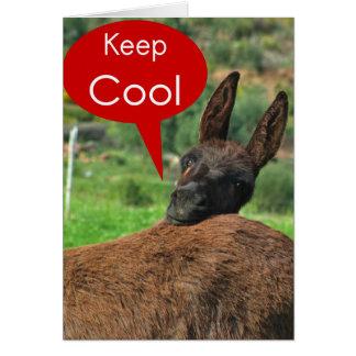 Carte GreetingCard : Âne heureux - gardez le cool