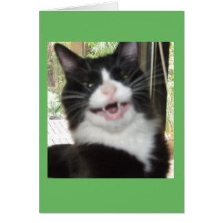 Carte grincheuse de chat