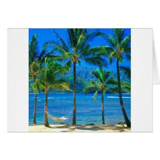 Carte Hamac Kauai Hawaï de plage