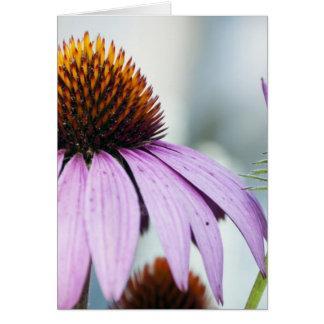 Carte Harmonie florale