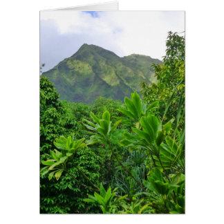 Carte Hawaï tropicale