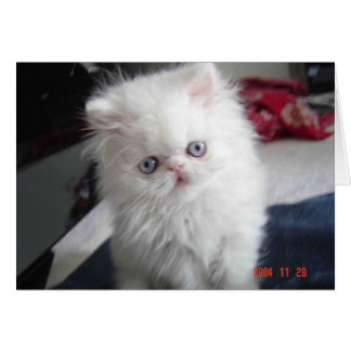 CARTE HELLO KITTY !