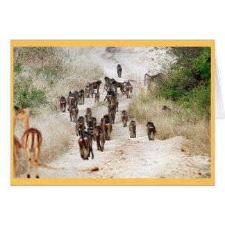 Carte Heure de pointe de babouin