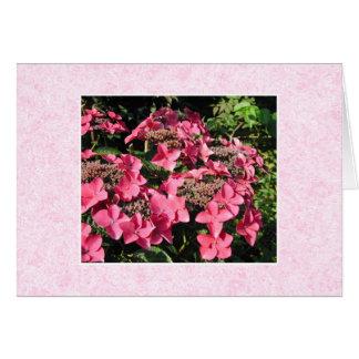 Carte Hortensias. Fleurs assez roses