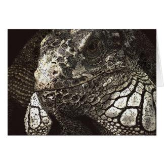 Carte Iguane