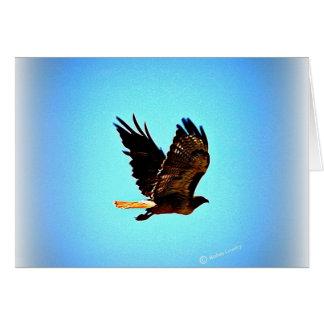 Carte Image rouge de faucon de queue