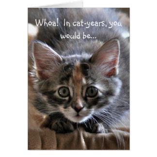 Carte intense de joyeux anniversaire de chaton