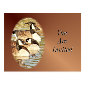 Carte-Invitation-personnaliser canadienne d'oies Carte Postale
