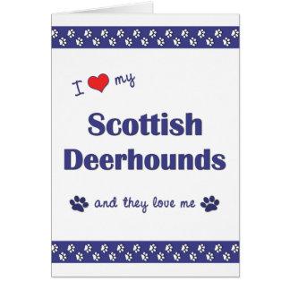 Carte J'aime mes limiers écossais (les chiens multiples)